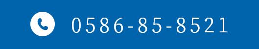 0586 85 8521